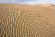 鳥取砂丘散策